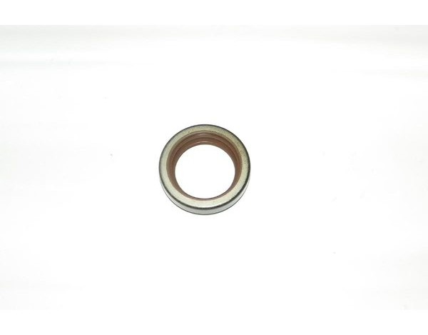 Gaskets and O-Rings